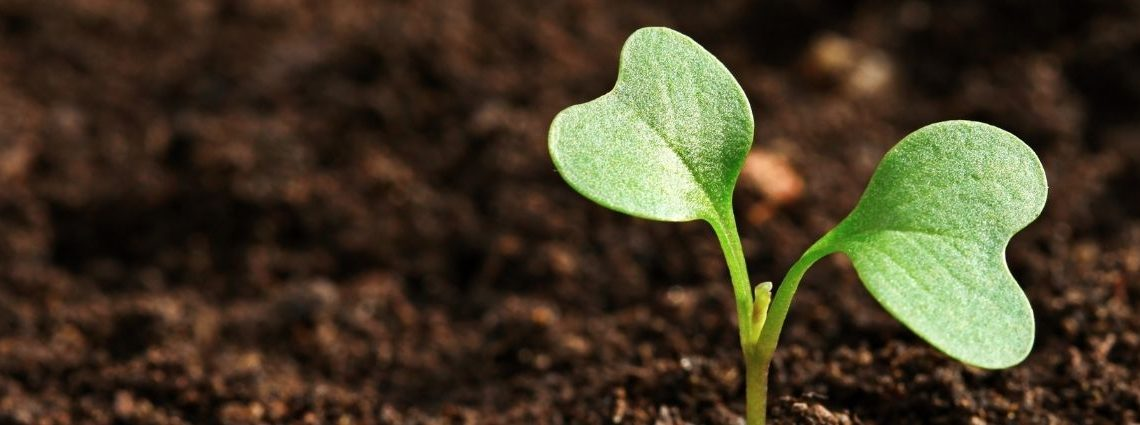 blog communication agriculture et horticulture