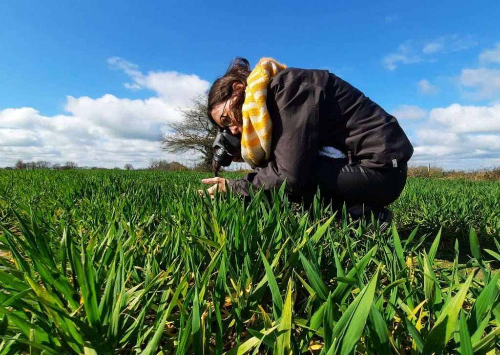consulenza in comunicazione per professionisti agricoltura